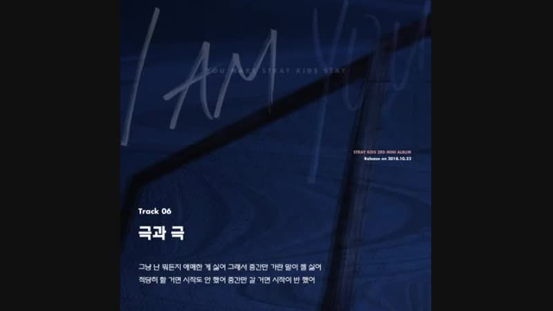 "Stray Kids 〈I am YOU〉 Inst. Lyric Card 6 ""극과 극(N_S)"""