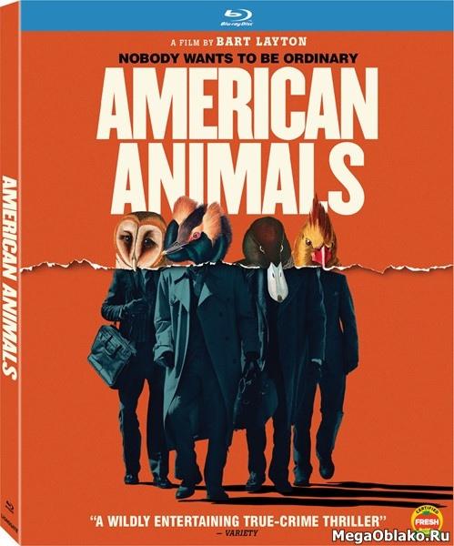 Американские животные / American Animals (2018/BD-Remux/BDRip/HDRip)
