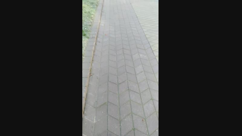 V_20181117_120815_vHDR_Auto