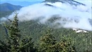 Mt. Mitchell, NC: 360-Degree View
