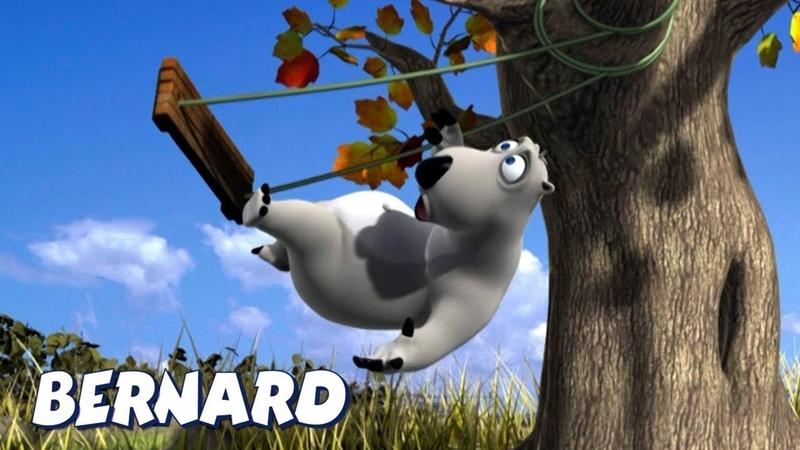 Bernard Bear   Cayendo del columpio y mas   Dibujos animados para niños   WildBrain