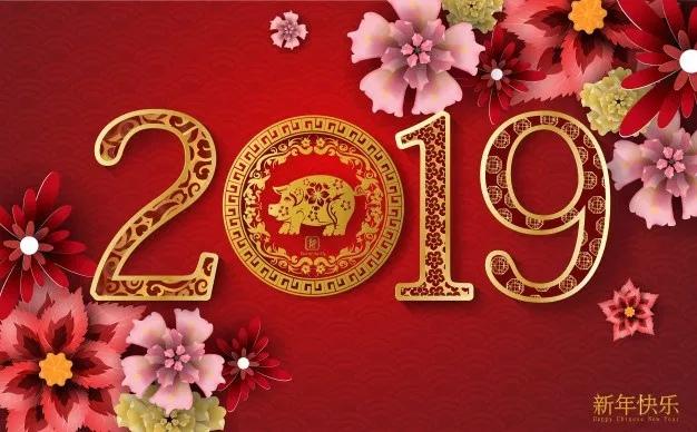 Цвет удачи и денег в 2019 году: какие цвета приносят удачу, везение и счастье в год Желтой Земляной Свиньи
