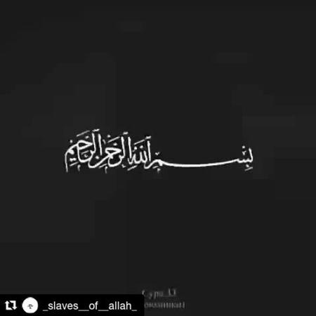 """Официальная страница on Instagram """"🔝💥🔥Кому не трудно оставляйте хотя бы точку в комментариях, для распространения публикации🔝💥🔥 🍀 @umma_muhammada_..."""