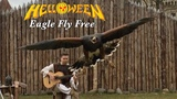 Eagle Fly Free (HELLOWEEN) Acoustic - Classical Fingerstyle guitar by Thomas Zwijsen