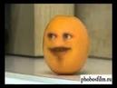  Педик Апельсин Какашка Попа 