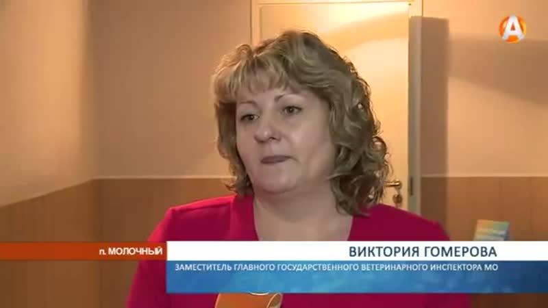 19.02.2016 АРКТИК ТВ (Семинар)