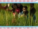 XiaoYing_Video_1539459686303.mp4