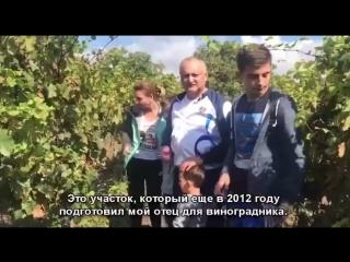Каждый год мы производим несколько тонн домашнего вина в родительском доме в Садова!