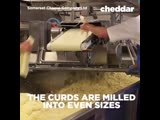 You know we love cheddar. Here's how it's made. 🧀🧀