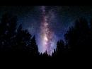 Звёзды или свобода выбора Александр Хакимов