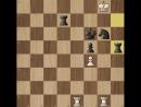 ♚ ШАХ И МАТ ♚ Задача на мат в 3 хода