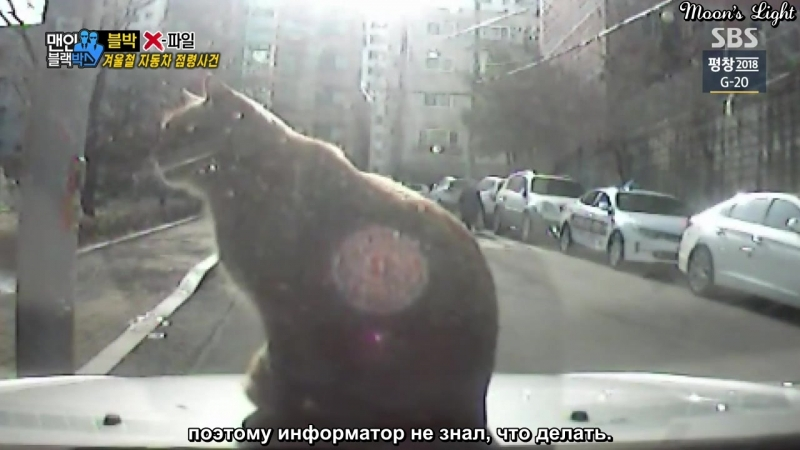 Men In Black Box Люди в авторегистраторе 81 [рус.саб]