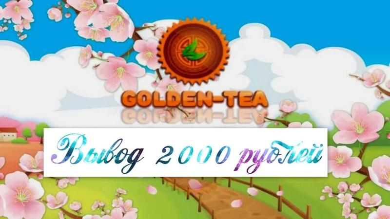Golden Tea - Вывел 2000 с Игры Золотой Чай