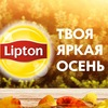 Lipton. Парк Яркого