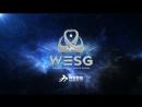World Electronic Sport Games 2018-2019 Ukraine