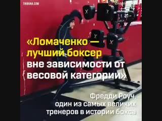 Имя Василия Ломаченко в мировом боксе