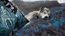 Gojira - Wolf Down the Earth (Español - English) Lyrics (CC)