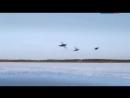 Winterverhaal Reizende polaire uil