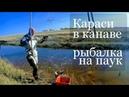 Рыбалка на паук загоном Рыбалка на подъемник Рыбалка 2019 Приколы на рыбалке 2019 Караси в канаве