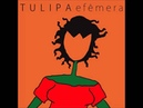 Tulipa Ruiz Efêmera Album Completo