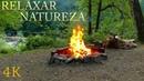 Som da Natureza para Relaxar - Vídeo 4K com Sons da Floresta, Riacho e Fogueira - Dormir, Meditar
