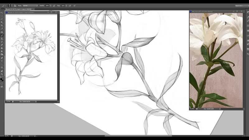 Рисование растения от куратора Skills Up School Елизаветы Парфеновой
