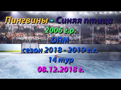 Пингвины - Синяя Птица , ОПМ среди команд 2006 г.р., сезон 2018-2019, 14тур, 08.12.2018