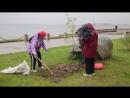 Ветеранские организации Петрозаводска высадили деревья в преддверии Дня пожилого человека