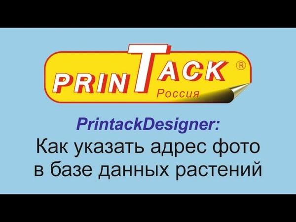 PrintackDesigner Как указать адрес фото в базе данных растений