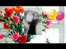 Дорогой маме, дочке, жене, бабушке с Юбилеем 60 лет. Видео на заказ.