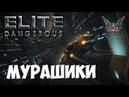 Elite: Dangerous - Мурашики