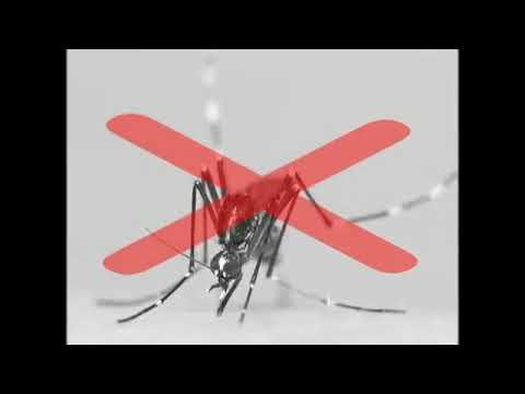 Pest Reject пест реджект от клопов отзывы тест Pest Reject от тараканов как пользоваться