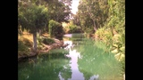 Horchat Hai Caliptus - Ishtar Alabina