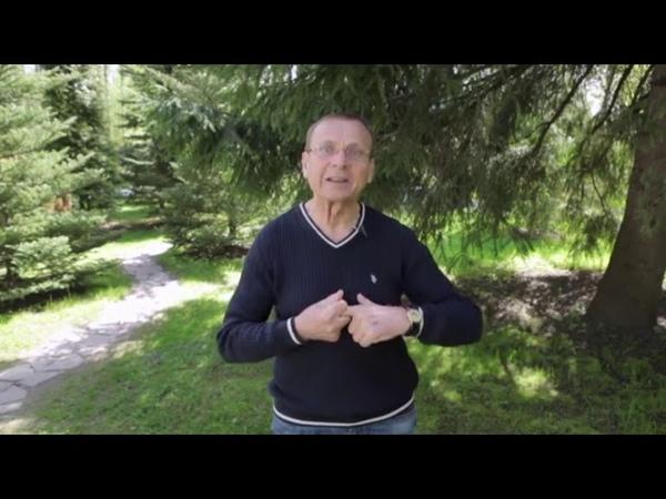 Виктор Алексеевич Ефимов Адекватное питание