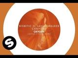 Bisbetic ft. Jason Walker - Canyons (Original Mix)
