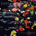 Blaqk Audio альбом Unstained