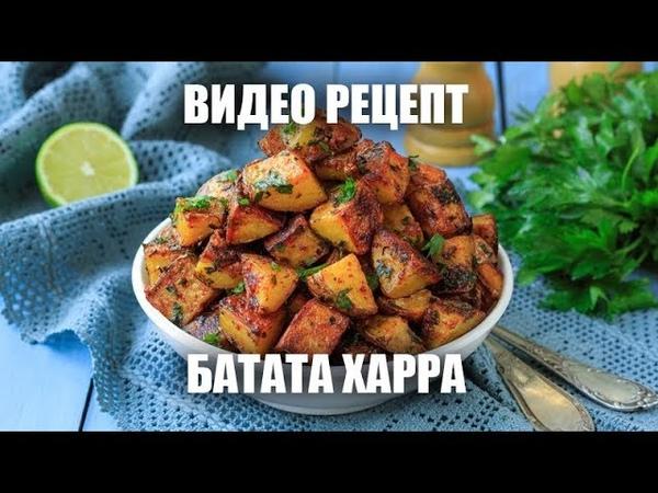 Батата харра пряный жареный картофель видео рецепт