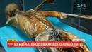 Історії ТСН Україна льодовикового періоду чи можна на Прикарпатті відшукати мумію