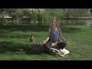 LifeForce Yoga® Breathing Bellows Breath Prana Pulling with Amy Weintraub