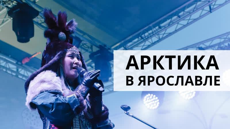 Арктика в Ярославле отдохнули в яранге и попробовали калитку