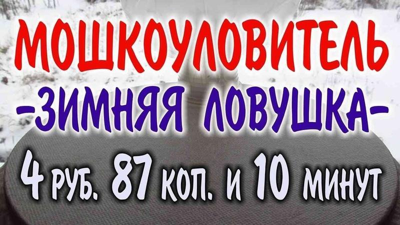 Разведение червей зимой Максим Медведев 15.11.2018