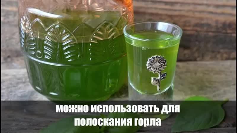 Бог создал это растение для людей! Мощный антиоксидант который может очистить артерий