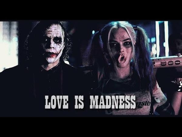 Harley Joker [Heath Ledger] - Love is Madness