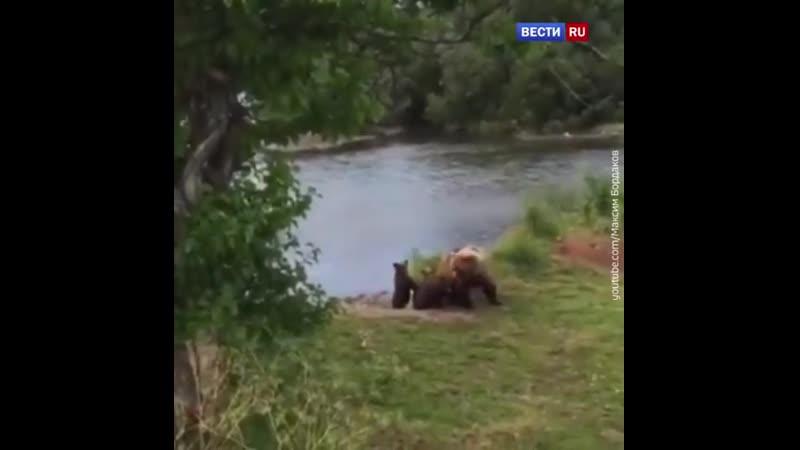 Во время пикника в Хабаровском крае