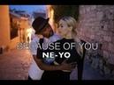 Ne Yo - Because of you - / Nina Zerjon
