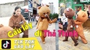 Gấu Lầy TIK TOK Thả Thính Cực Gắt | Tik Tok China Funny Moment