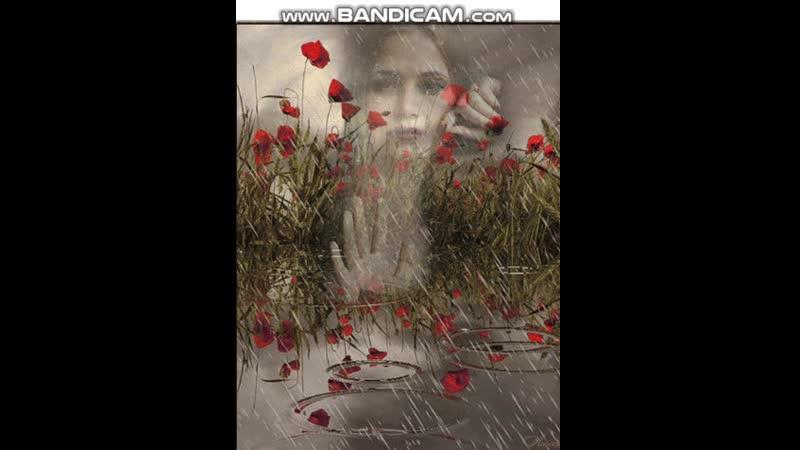 дождь словно слёзы льётся ручьём только слёзы льются от радости и от боли а дождь льётся по природной воли