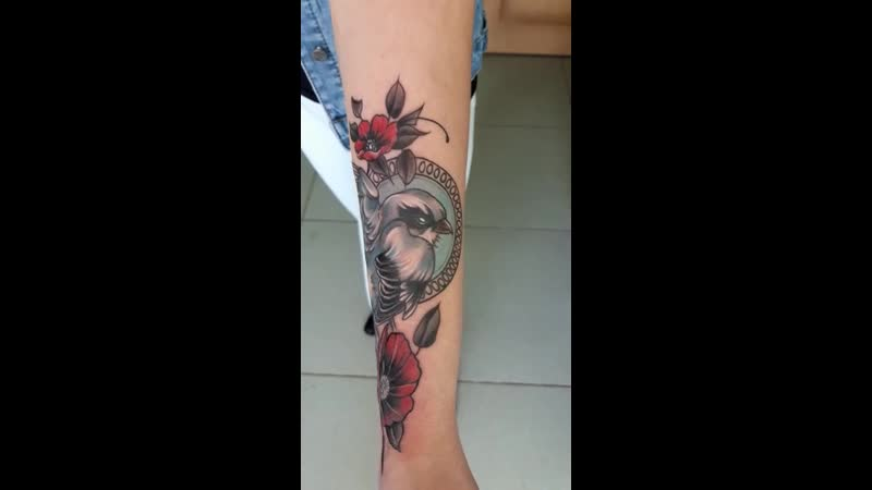 все таки сколько в тамбовской области тату мастеров шрамированную акулу превратил в птичку фото до в комментах