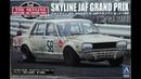 Nissan Skyline 4Dr 2000GT-R JAF GRAND PRIX 58 (KPGC10) `70 - Aoshima 1/24