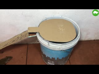 Pvc water bottle mouse trap_diy make a mouse trap homemade_mouse reject_idea mou